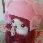 ピンクの可愛い帽子❤