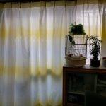 壁紙に合わせた黄色いカーテンが届いた(•ө•)♡