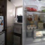 新しい冷蔵庫の中に興味津々なココナ♪
