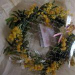 ミモザのお花で一気に春になりました(^^)v