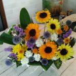 【夏の花】ひまわりとチビたち