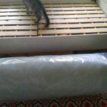 新しいふわふわのベッドマットの上にチビ達が集合~♪