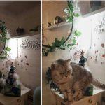 【2018年】クリスマスの飾り付け♪ココとハピ