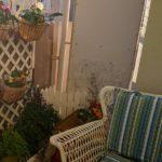 ベランダの大掃除で憩いのコーナーを作ってみた♪もうすぐ年末