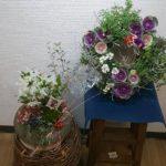 お正月【迎春】寄せ植えとリース(室内用とベランダ用)猫組との撮影会